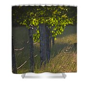 Evening Hunt Shower Curtain
