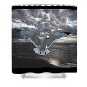 Evening Landing Shower Curtain