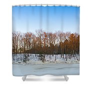 Evening Light On The Trees Shower Curtain