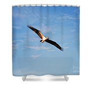 Evening Meal Shower Curtain