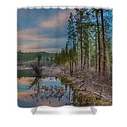 Evening On The Banks Of A Beaver Pond Shower Curtain by Omaste Witkowski