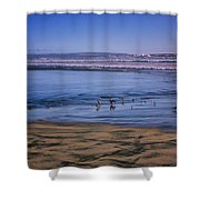 Evening Peace On Coronado Beach Shower Curtain