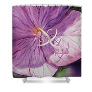 Evening Primrose Flower Shower Curtain