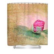 Evening Rosebud Shower Curtain