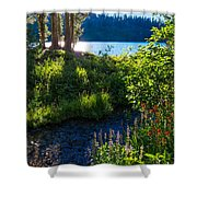 Evening Shadows At Lake George Shower Curtain