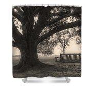 Evening Swing - Oak Tree - Altus Arkansas Shower Curtain