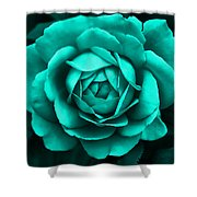 Evening Teal Rose Flower Shower Curtain