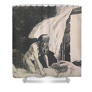 Evening Wind Shower Curtain by Edward Hopper