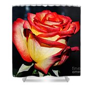 Event Rose 3 Shower Curtain