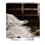 Events Of The Past Shower Curtain