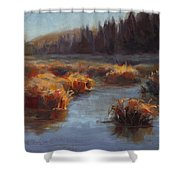 Ever Flowing Alaskan Creek In Autumn Shower Curtain