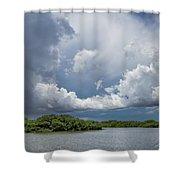 Everglades 0257 Shower Curtain