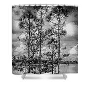 Everglades 0336bw Shower Curtain