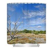 Everglades Coastal Prairies Shower Curtain