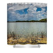 Everglades Lake 6930 Shower Curtain by Rudy Umans