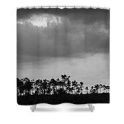 Everglades No.5  Shower Curtain