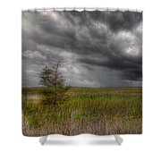 Everglades Storm Shower Curtain by Rudy Umans