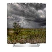 Everglades Storm Shower Curtain