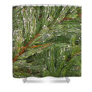 Evergreen Covered In Ice Shower Curtain