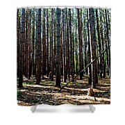 Evergreen Forest Shower Curtain