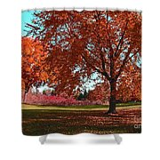Every Year I Miss Autumn After It Is Over Shower Curtain