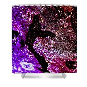 Evolution - Abstract 003 Shower Curtain