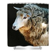 Ewe Are So Beautiful Shower Curtain