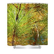 Exalted Executed Erection Shower Curtain