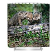 Exchange Of Confidential Information Shower Curtain