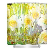 Exodus 33 18 Shower Curtain