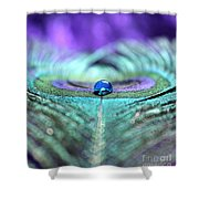 Exotic Peacock Shower Curtain