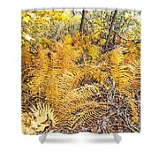 Exotic Plants Of The Dunes Shower Curtain