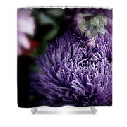 Exotic Purple Flower Shower Curtain