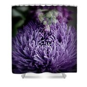 Exotic Purple Flower Two Shower Curtain