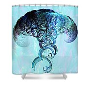 Expanding Shower Curtain
