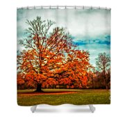 Expecting The Winter Shower Curtain