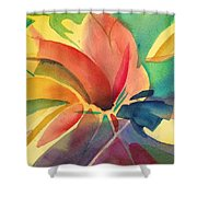 Exploding Lily Shower Curtain
