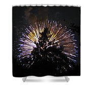 Exploding Tree Shower Curtain