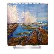 Exploding Waves North Beach Wollongong Australia Shower Curtain