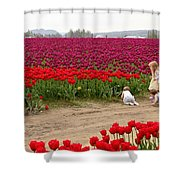 Exploring The Tulip Fields Shower Curtain