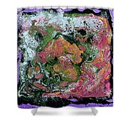 Exploring The Universe Shower Curtain