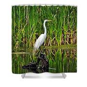 Exquisite Egret Shower Curtain