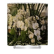 Exuberant Orchid Display Shower Curtain