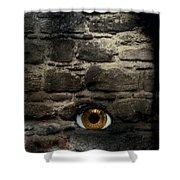 Eye In Brick Wall Shower Curtain