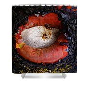 Eye Of Madrone Shower Curtain