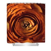 Eye Of The Bloom Shower Curtain