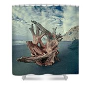 Eye Of The Driftwood Shower Curtain