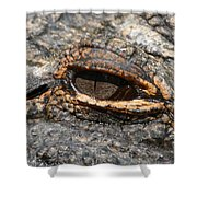 Eye Of The Gator Shower Curtain