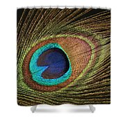 Eye Of The Peacock #5 Shower Curtain