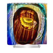 Eye Of Zeus Shower Curtain by Omaste Witkowski